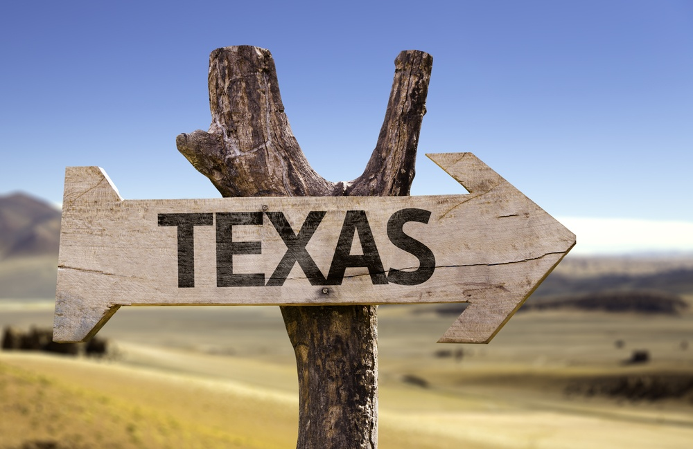 Texas wooden sign isolated on desert background.jpeg